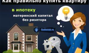 Как купить квартиру в ипотеку без риэлтора и с чего начать — пошаговая инструкция по покупке жилья в новостройке или на вторичном рынке + покупка на материнский капитал или без ипотеки