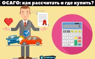 Электронный полис ОСАГО: онлайн рассчитать стоимость страховки автомобиля + советы экспертов по получению полиса