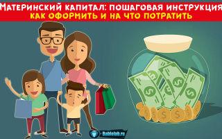 Материнский капитал: что это такое и на что можно использовать в этом году на 1,2 и 3-го ребенка+ примеры и анализ